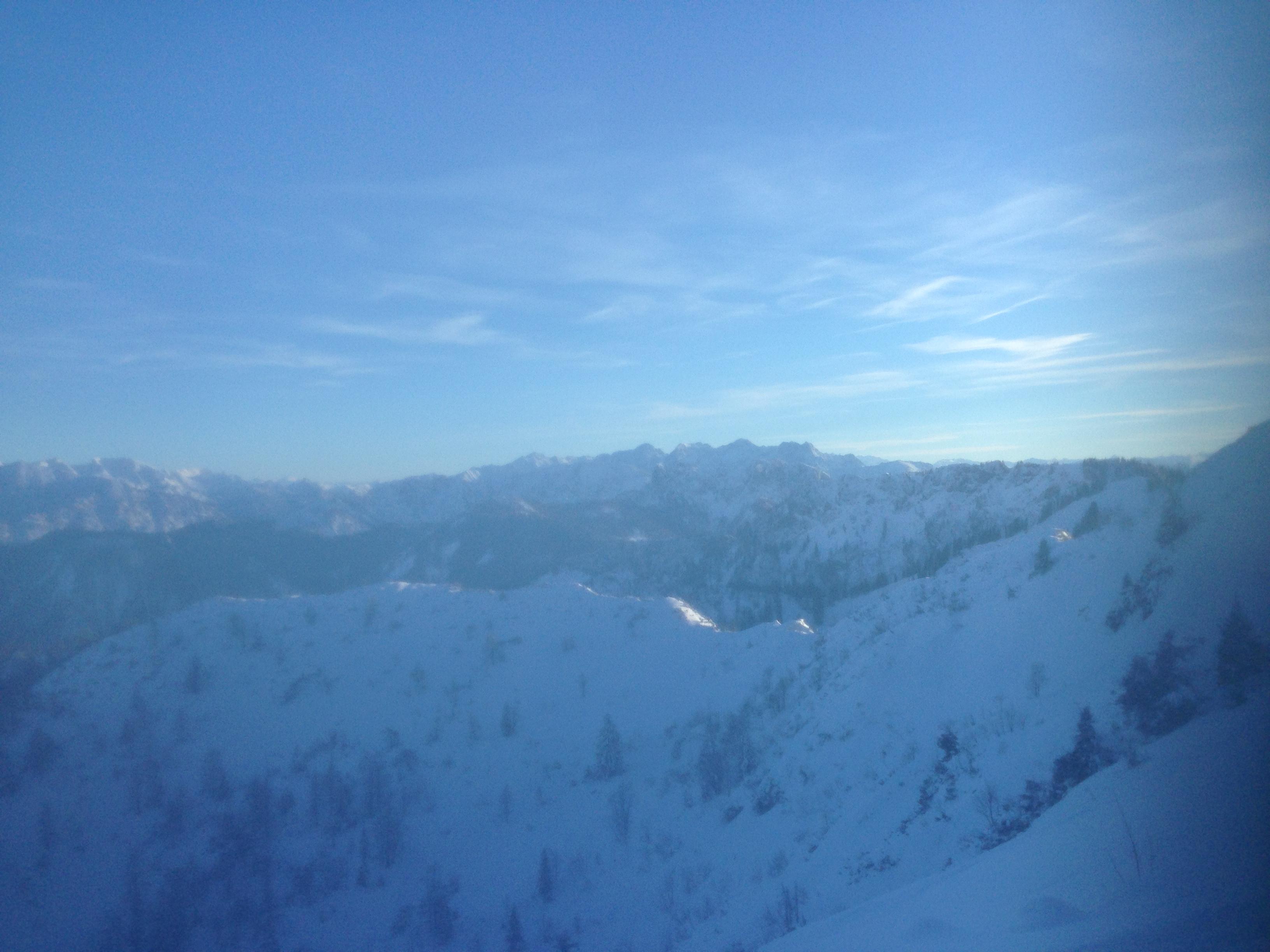 Auf der Suche nach ein bißchen Frost